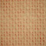 Light Micrograph Of Plain Weave Textile Structure